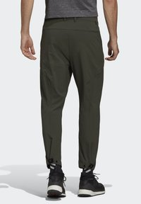 adidas Performance - TERREX HIKE TROUSERS - Friluftsbukser - green - 2
