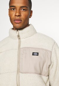 Dickies - CHUTE - Veste polaire - light taupe - 4
