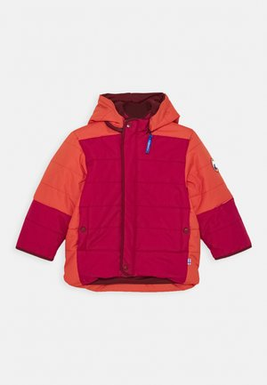KOIRA HUSKY - Winter jacket - persian red/cabernet