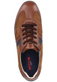 Lloyd - Sneakersy niskie - malt/bluе - 3