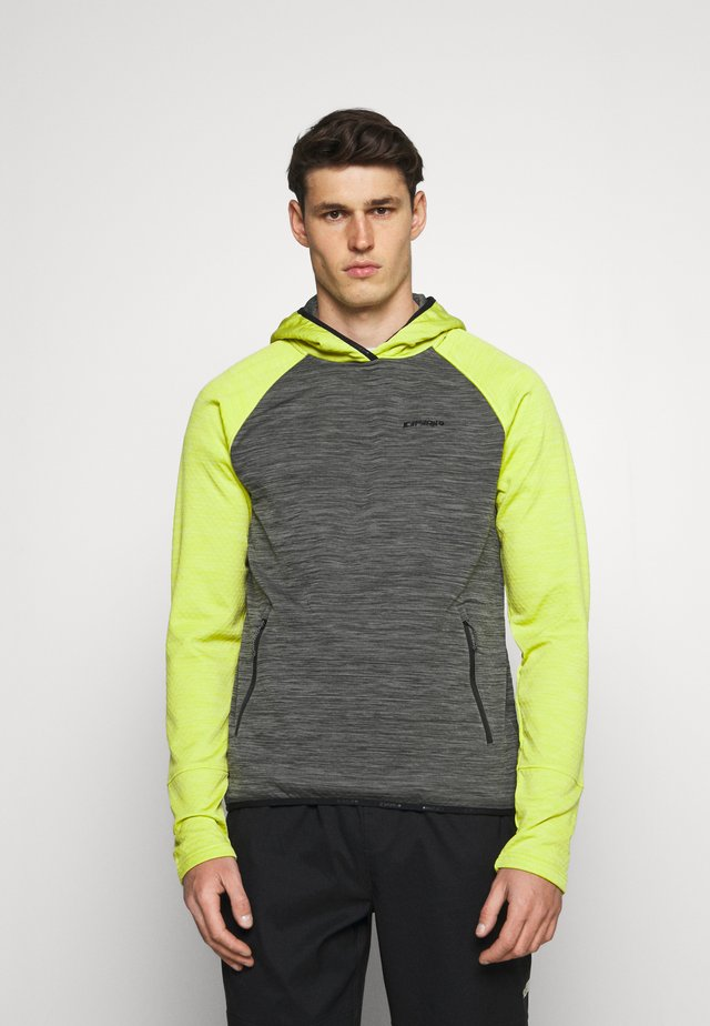 DENISON - Sweatshirt - lead/grey