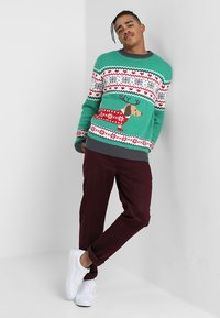 Urban Classics - SAUSAGE DOG CHRISTMAS - Jumper - green/offwhite/grey/red - 1