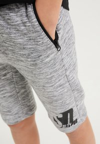 WE Fashion - SALTY DOG - Tracksuit bottoms - grey - 2