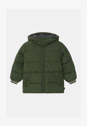 TODDLER BOY  - Winter jacket - chives