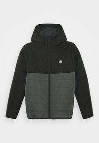 Element - ALDER PUFF FUNDAMENT - Winter jacket - asphalt - 0