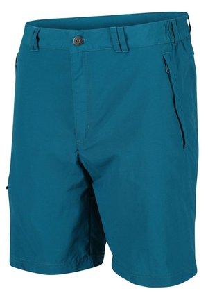 REGATA LEESVILLE SHORTS II KURZE WANDERHOSE HERREN TREKKINGHOSE  - Outdoor shorts - gulfstream