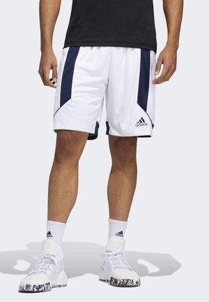 CREATOR 365 SHORTS - Sports shorts - white
