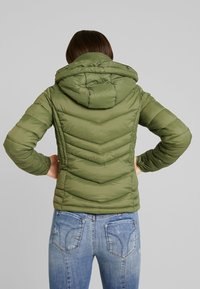 Superdry - 3 IN 1 JACKET - Light jacket - four leaf clover - 3