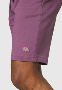 Dickies - CHAMPLIN - Shorts - purple gumdrop - 4