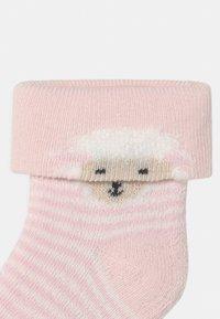 Ewers - SHEEP 6 PACK - Sokken - white/pink - 3