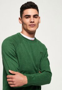 Superdry - ORANGE LABEL  - Pullover - green - 3
