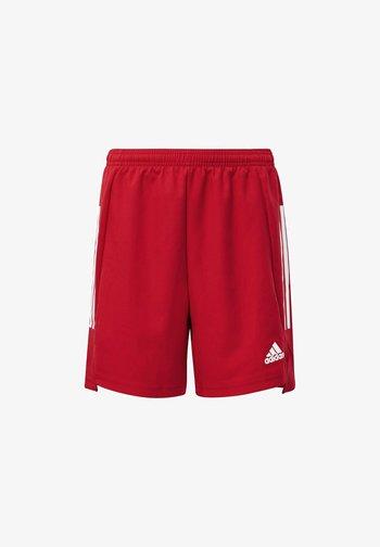 CONDIVO 21 PRIMEBLUE SHORTS - Sports shorts - red