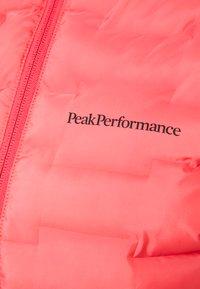 Peak Performance - ARGON HYBRID HOOD - Outdoor jacket - alpine flower - 2