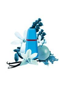 Cacharel Fragrance - LOULOU EAU DE PARFUM VAPO - Perfumy - - - 2