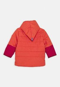 Finkid - KOIRA HUSKY - Winter jacket - persian red/cabernet - 1