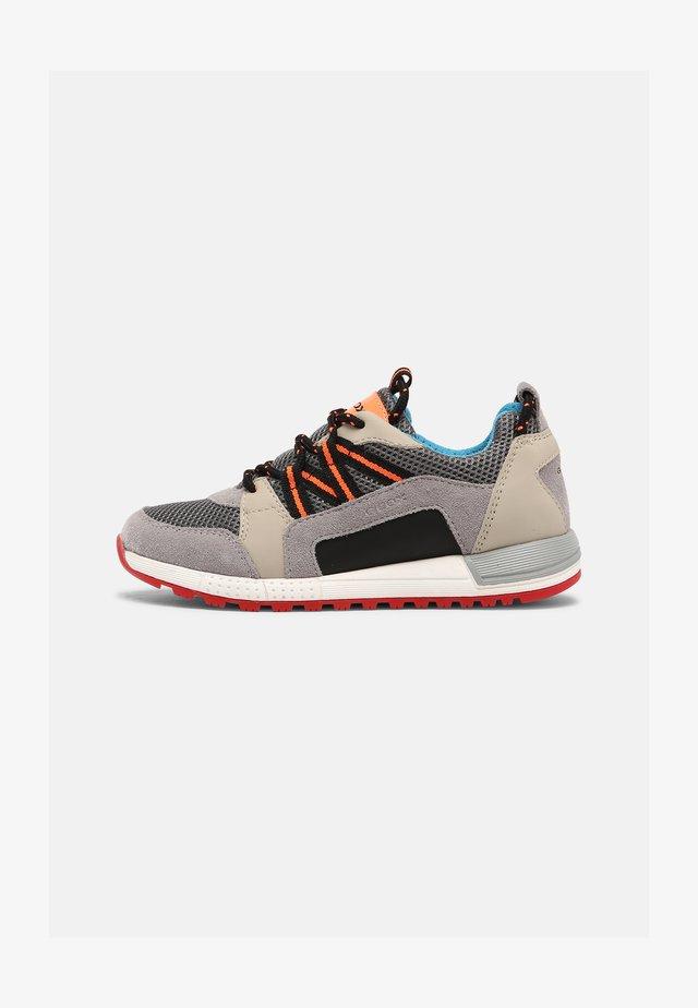 ALBEN BOY - Sneakers laag - grey/beige