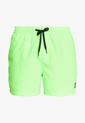 Swimming shorts - green gecko