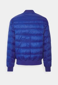 Tommy Jeans - LIGHT JACKET - Down jacket - blue - 1