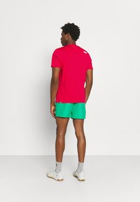 The North Face - M S/S EASY TEE - EU - T-shirt med print - rococco red - 2
