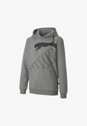 BIG LOGO YOUTH - Hoodie - medium gray heather