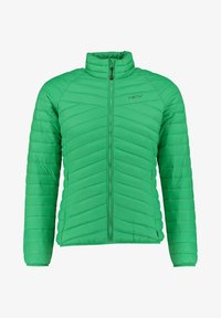 Meru - COLLINGWOOD - Winter jacket - grün (400) - 0