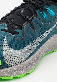 Nike Performance - PEGASUS TRAIL 2 - Zapatillas de trail running - dark teal green/light silver/black - 5
