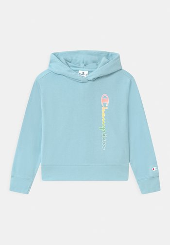 COLOR LOGO HOODED