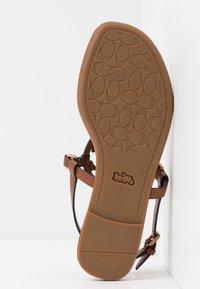 Coach - JERI - Sandály s odděleným palcem - saddle - 6