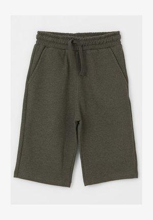 REGULAR FIT  - Shorts - green