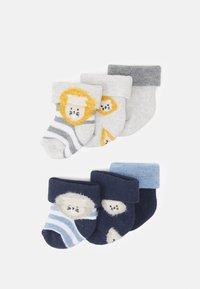 Ewers - LION 6 PACK - Socks - blue/grey - 1