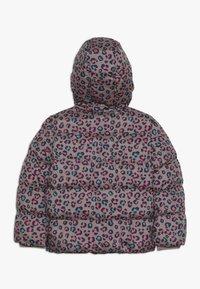 Friboo - Zimní bunda - deep taupe - 1