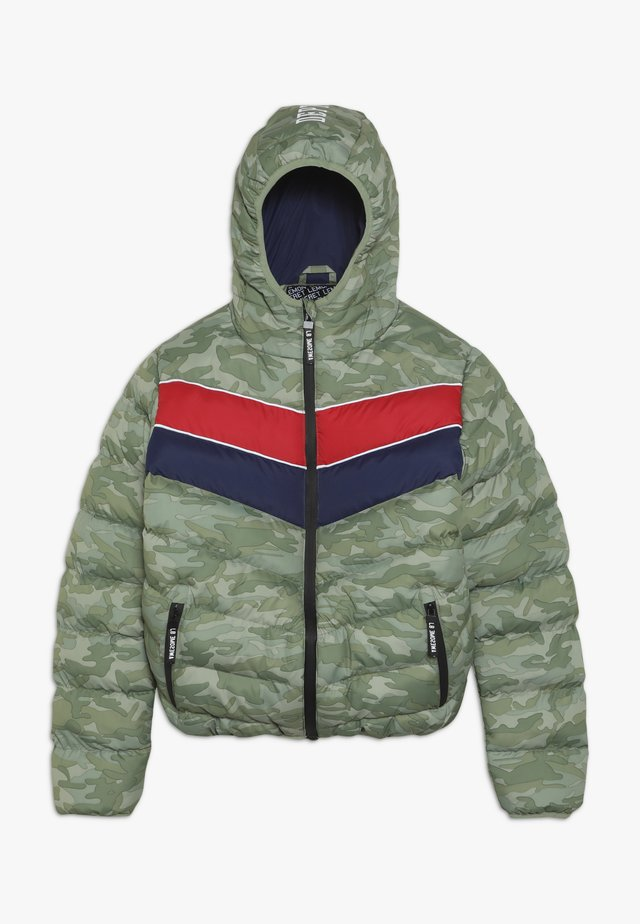 TEEN BOYS JACKET - Chaqueta de invierno - green