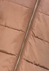 Esprit Collection - MIT 3M® THINSULATE-FÜLLUNG - Winter jacket - brown - 5
