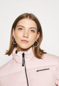 Dickies - RODESSA - Winter jacket - light pink - 3