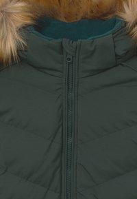 Cars Jeans - KIDS COLETA - Winter jacket - bottle - 4