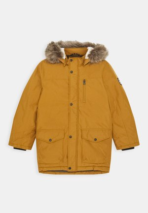 NKMMIBIS JACKET - Vinterfrakker - golden brown