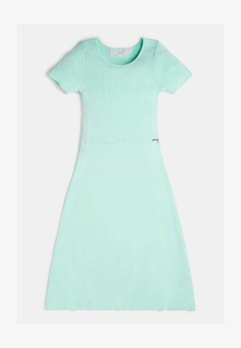 RIPPEN - Day dress - green multi