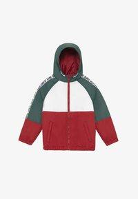 Pepe Jeans - FERN - Winter jacket - myrtle green - 2