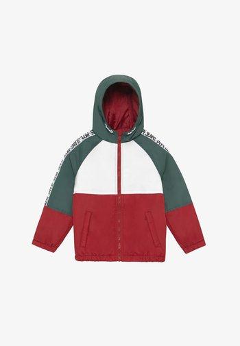 FERN - Winter jacket - myrtle green