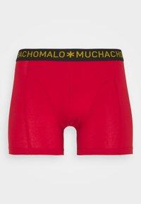MUCHACHOMALO - BEEHIVE 5 PACK - Onderbroeken - royal blue/red/black - 9