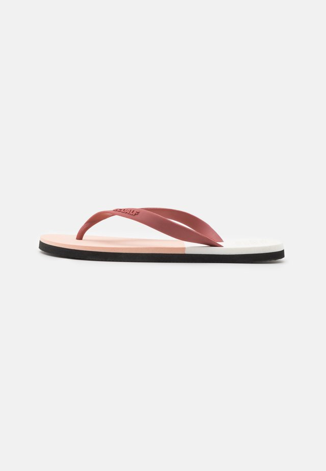 BICOLOR - Pool shoes - rosewood