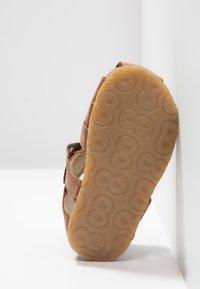 Falcotto - ALBY - Zapatos de bebé - brown - 5