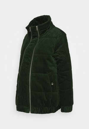MLDAPHNE JACKET - Winter jacket - mountain view