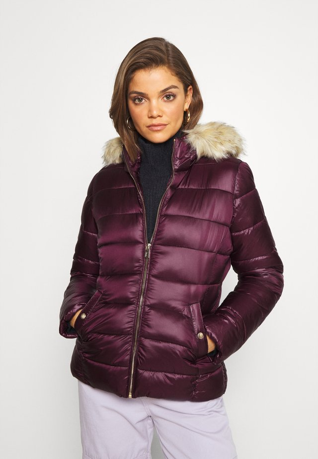 LIBBY - Winter jacket - muscat