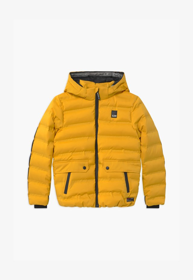 LION - Winterjacke - mid yellow