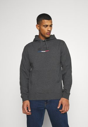 PARIS ARCH HOOD - Sweater - charcoal