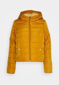 VMSIMONE HOODY SHORT JACKET - Light jacket - buckthorn brown