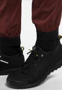 Haglöfs - L.I.M FUSE PANT WOMAN - Outdoor trousers - maroon red - 3