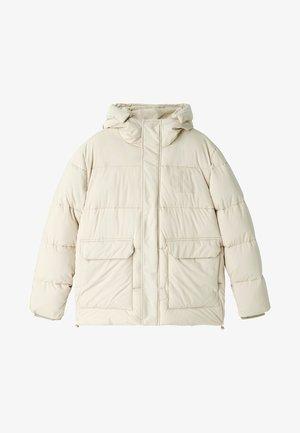 ECO JACKET - Winter jacket - irish cream