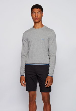 RISTON - Strickpullover - light grey